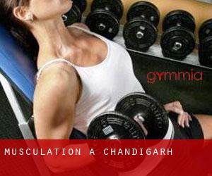 Musculation à Chandigarh