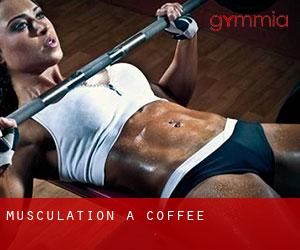 Musculation à Coffee
