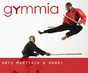 Arts Martiaux à Hawaï